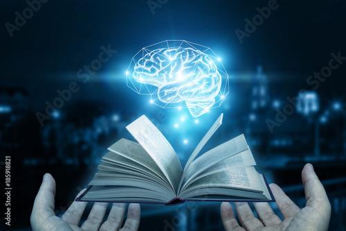 Fotografia  Book as a source for the brain.