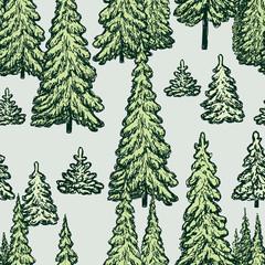 FototapetaPattern of the fir trees