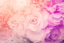 Sweet Abstract Romantic Flower Background With Color Filter Effect Love Concept