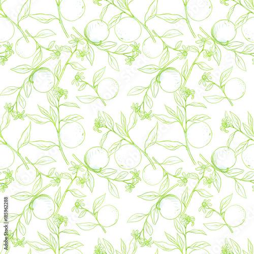 wzor-z-galezi-drzewa-owocowe