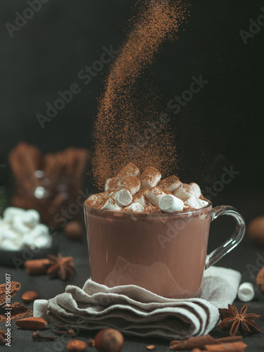 Recess Fitting Chocolate Hand sprinkled cinnamon powder on glass mug with hot chocolate cocoa drink. Copy space. Dark background. Low key. Winter food and drink concept.