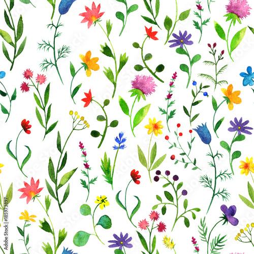 wzor-z-akwarela-doodle-roslin-i-kwiatow