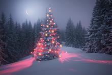 Magic Tree On Christmas