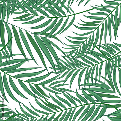 Foto op Aluminium Tropische bladeren Beautifil Palm Tree Leaf Silhouette Seamless Pattern Background Vector Illustration
