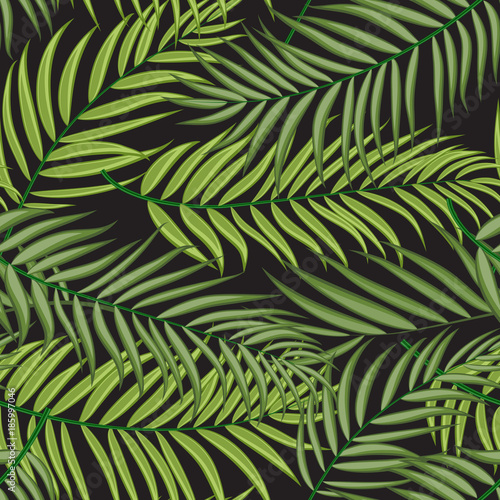 Fotobehang Tropische bladeren Beautifil Palm Tree Leaf Silhouette Seamless Pattern Background Vector Illustration
