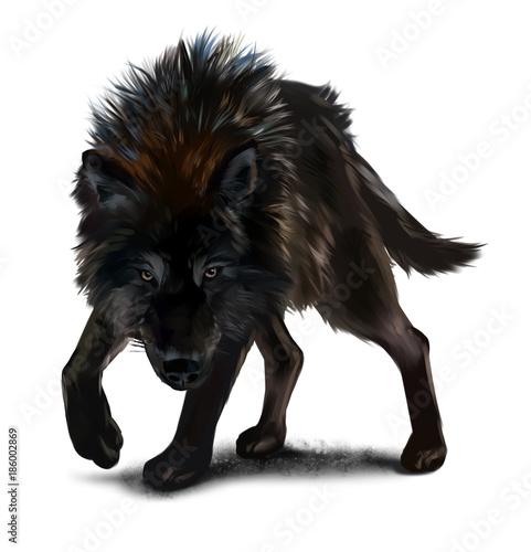 Fotografia Aggressive black wolf watercolor painting