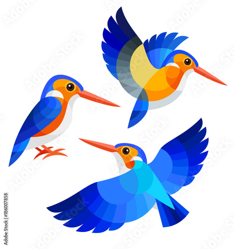 Foto Stylized Birds - White-bellied Kingfisher