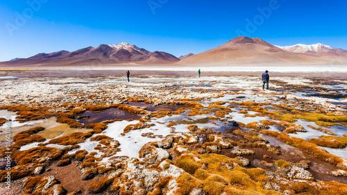 Photo Lake, Bolivia Altiplano