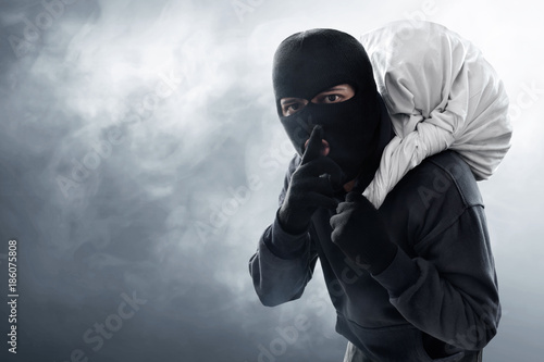 Cuadros en Lienzo Masked thief stealing