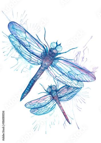 In de dag Boho Stijl dragonflies