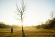 A young healthy woman walking towards a lone tree in a field with the sun setting behind. Active and healthy lifestyle.
