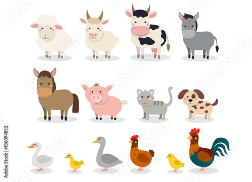 Obraz Farm animals set in flat style isolated on white background. Vector illustration. Cute cartoon animals collection: sheep, goat, cow, donkey, horse, pig, cat, dog, duck, goose, chicken, hen, rooster - fototapety do salonu