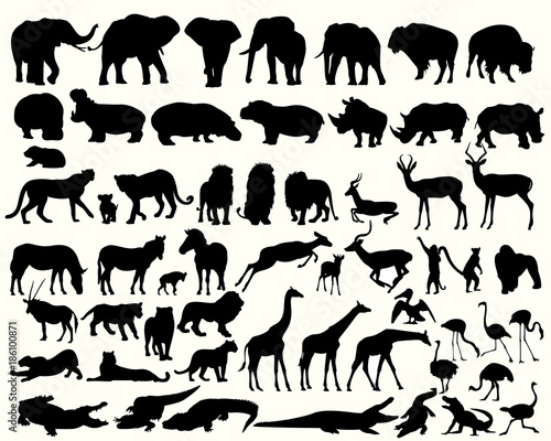 Collection of different animals on a white background Wall mural