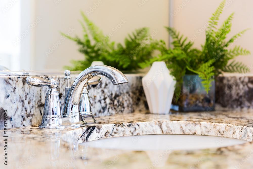 Fototapeta Closeup of modern bathroom sink with neutral granite countertop and mirror, green plant in pot