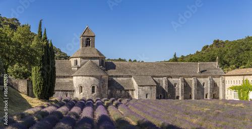 Champ de lavande devant l'abbaye Notre-Dame-de-Sénanque du XIIe siècle