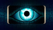 The all-seeing eye of Big brother in your smartphone, concept of permanent global covert surveillance using mobile devices, security of computer systems and networks, privacy