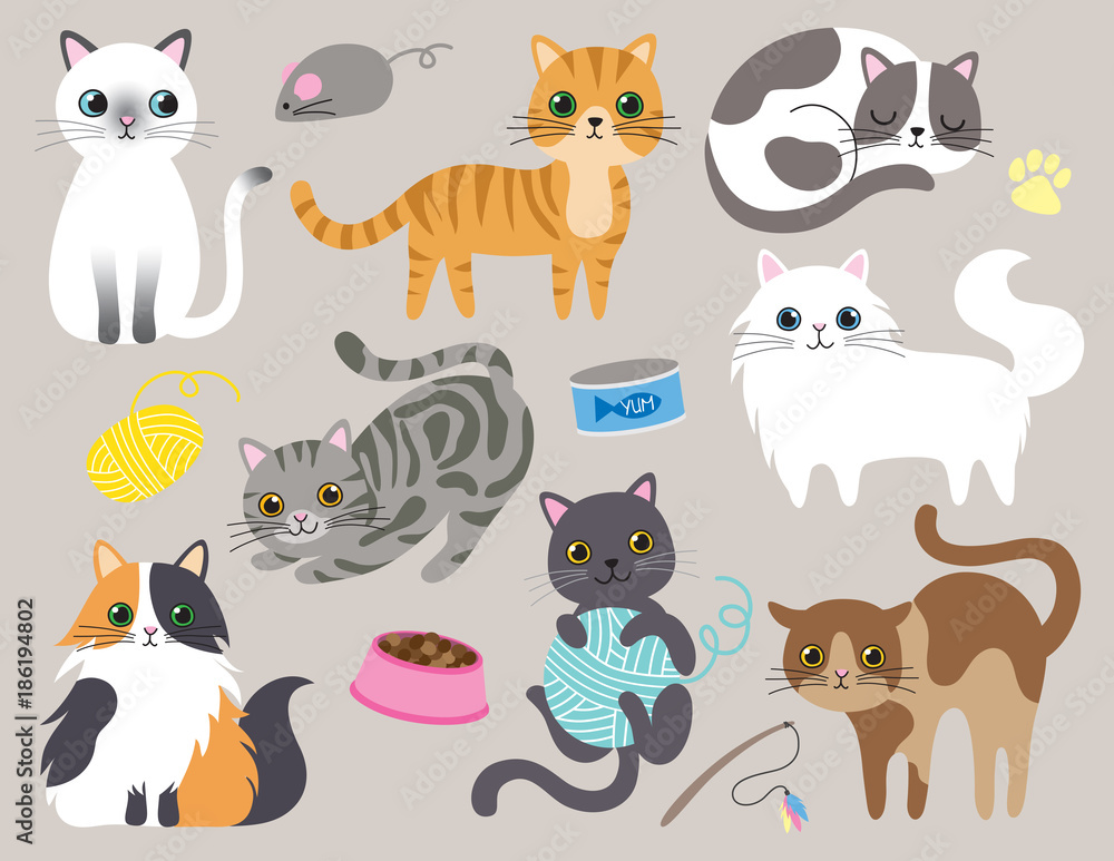 Fototapety, obrazy: Cute kitty cat vector illustration set with different cat breeds, toys, and food.