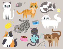 Cute Kitty Cat Vector Illustration Set With Different Cat Breeds, Toys, And Food.