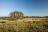 Dry meadows and coppice in autumn