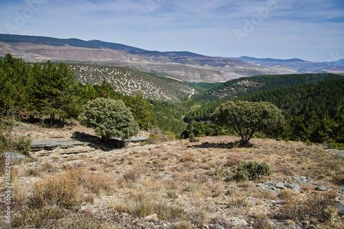Landscape close to Matasejun in Soria province, Spain