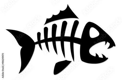 Valokuva  Skeleton of fish.