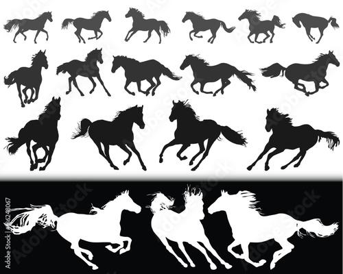 Fotografía  Black silhouettes of horses on a white background and  white silhouettes  on a b