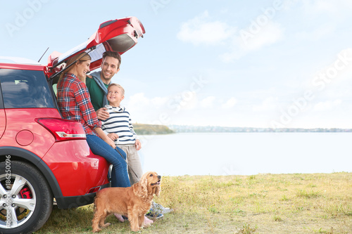 Fotografia, Obraz  Young family with cute boy and dog near car