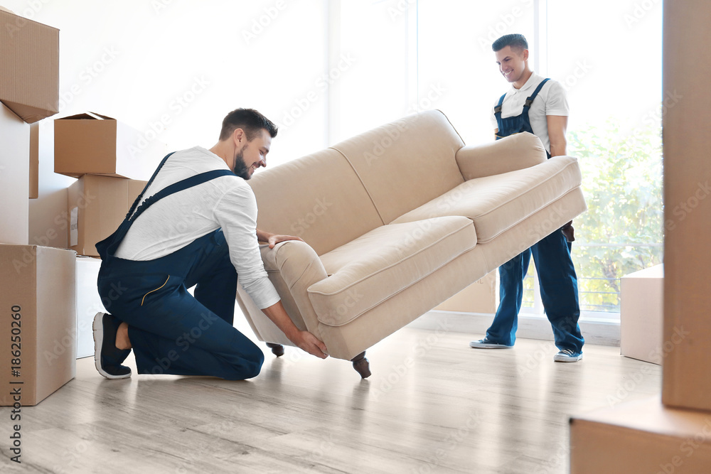 Fototapety, obrazy: Delivery men moving sofa in room at new home