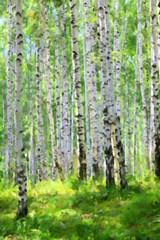 Fototapeta Brzoza summer green birch forest, oil paint stylization