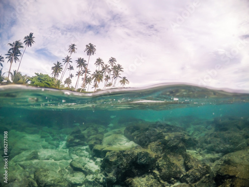 Split view cross section of sea water and palm trees in Samoa, South Pacific Island. Rocks and fish underwater; cloudy sky above.