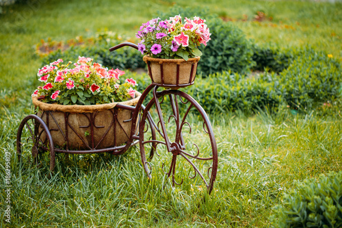 Foto op Plexiglas Fiets Decorative Vintage Model Old Bicycle Equipped Basket Flowers Garden