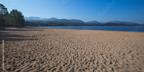 Sandy beach of Loch Morlich with pine forest and the mountains of the Cairngorms Canvas Print
