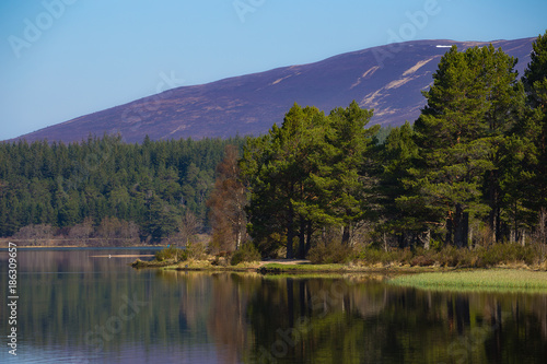 Photo Loch Morlich with Glenmore Forest and mountains of the Cairngorms in Scotland