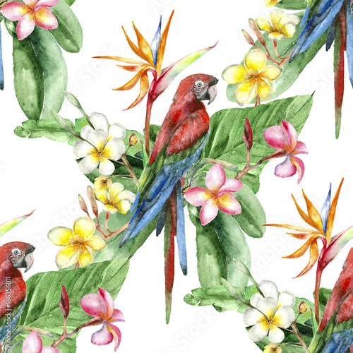 Deurstickers Papegaai Tropical watercolor pattern