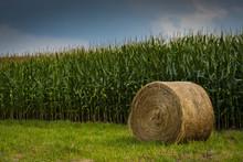 Hay Bail In Cornfield In Boone...