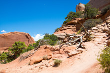 Arches National Park Panorama ...