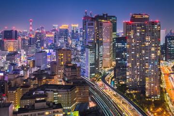 Fototapeta Night skyline of Tokyo, Japan