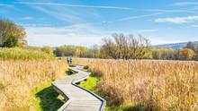 Appalachian Trail Board Walk, ...