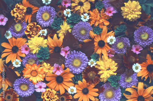 Tuinposter Bloemen Floral background with vintage toning. Texture of the flowers.