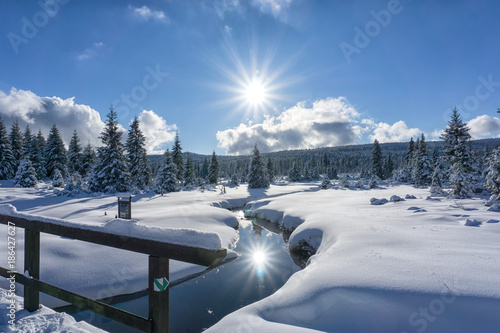 Tuinposter Reflectie Winter mountain landscape with stream and wooden bridge. Trees and the sun are reflected in the water. Izera Mountains, Czech Republic, Europe.