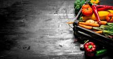 Organic Food. Fresh Vegetables...