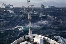 Arctic - Ship In Scoresbysund - Greenland