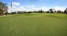Lush Green Grass On A Golf Cou...