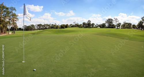 Lush green grass on a golf course