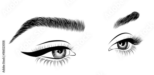 Fotografía Hand-drawn woman's sexy luxurious eye with perfectly shaped eyebrows and full lashes
