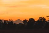 Fototapeta Sawanna - Silhouette forest and sawanna in Sunrise.