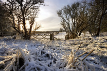 Winter Morning - Yorkshire Dales - England