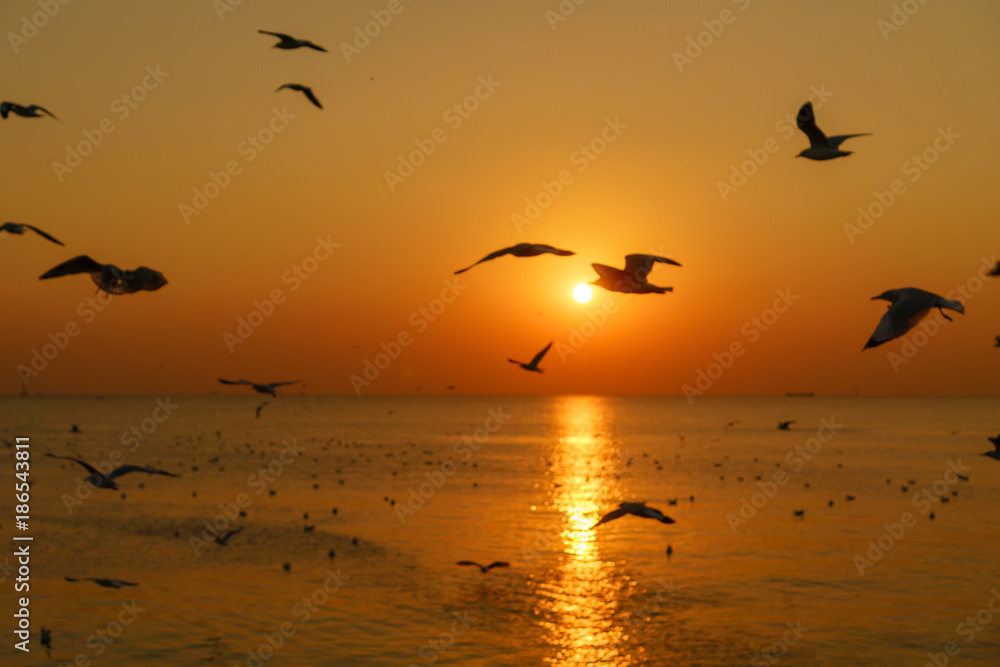 Group of silhouette seagulls flying over the sea on twilight sky at sunset