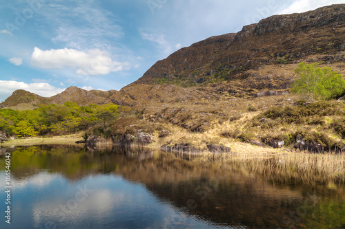 Idyllic scenery of Killarney National Park, Ireland #186546042