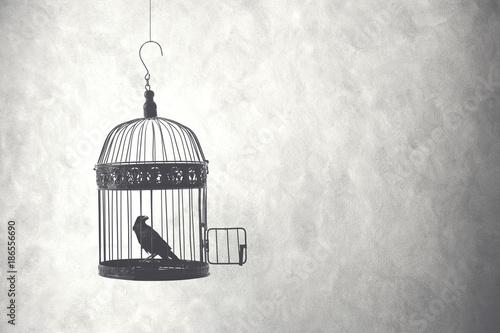 Photo  bird inside birdcage